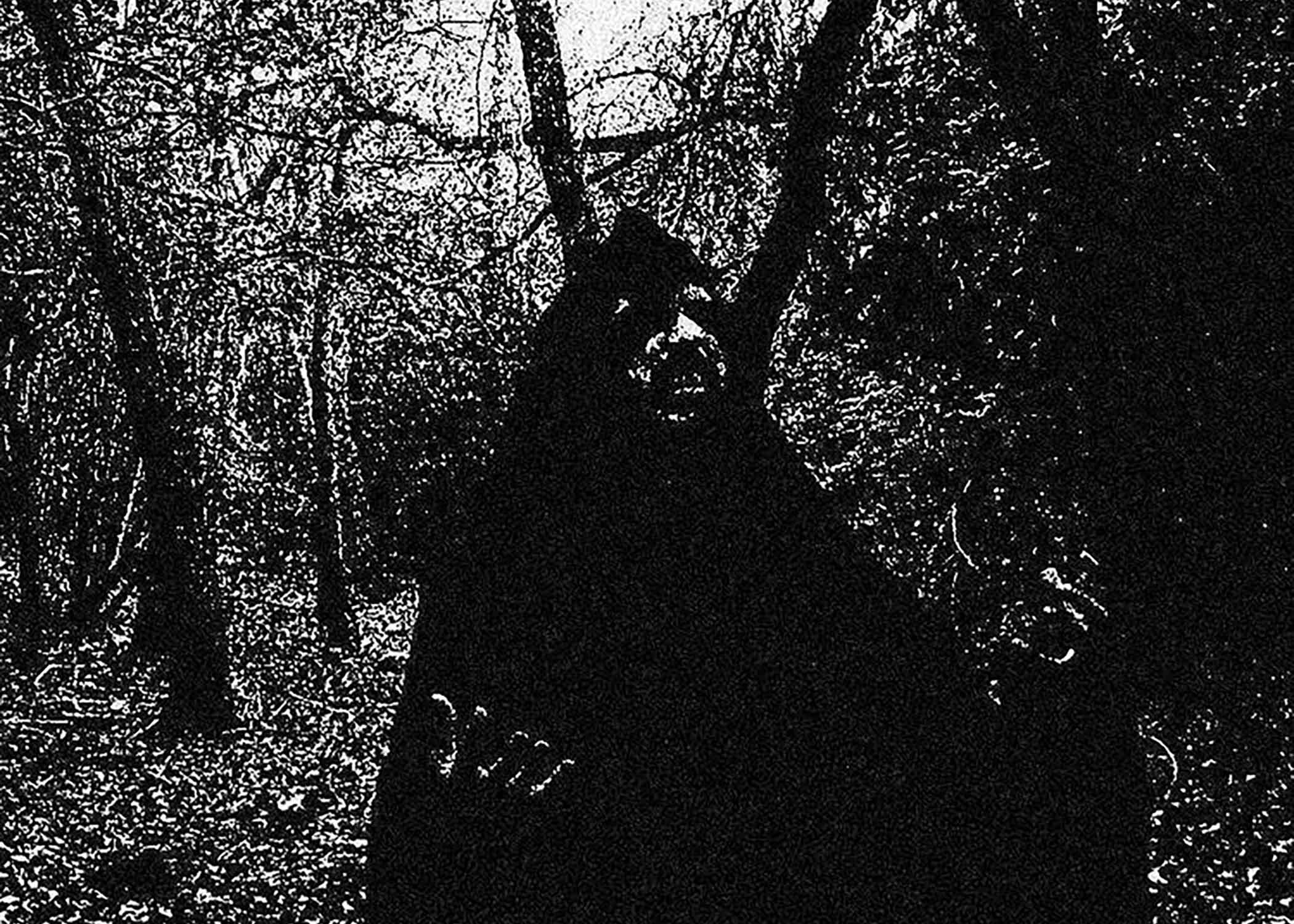 Black Metal Now: Within Thy Wounds